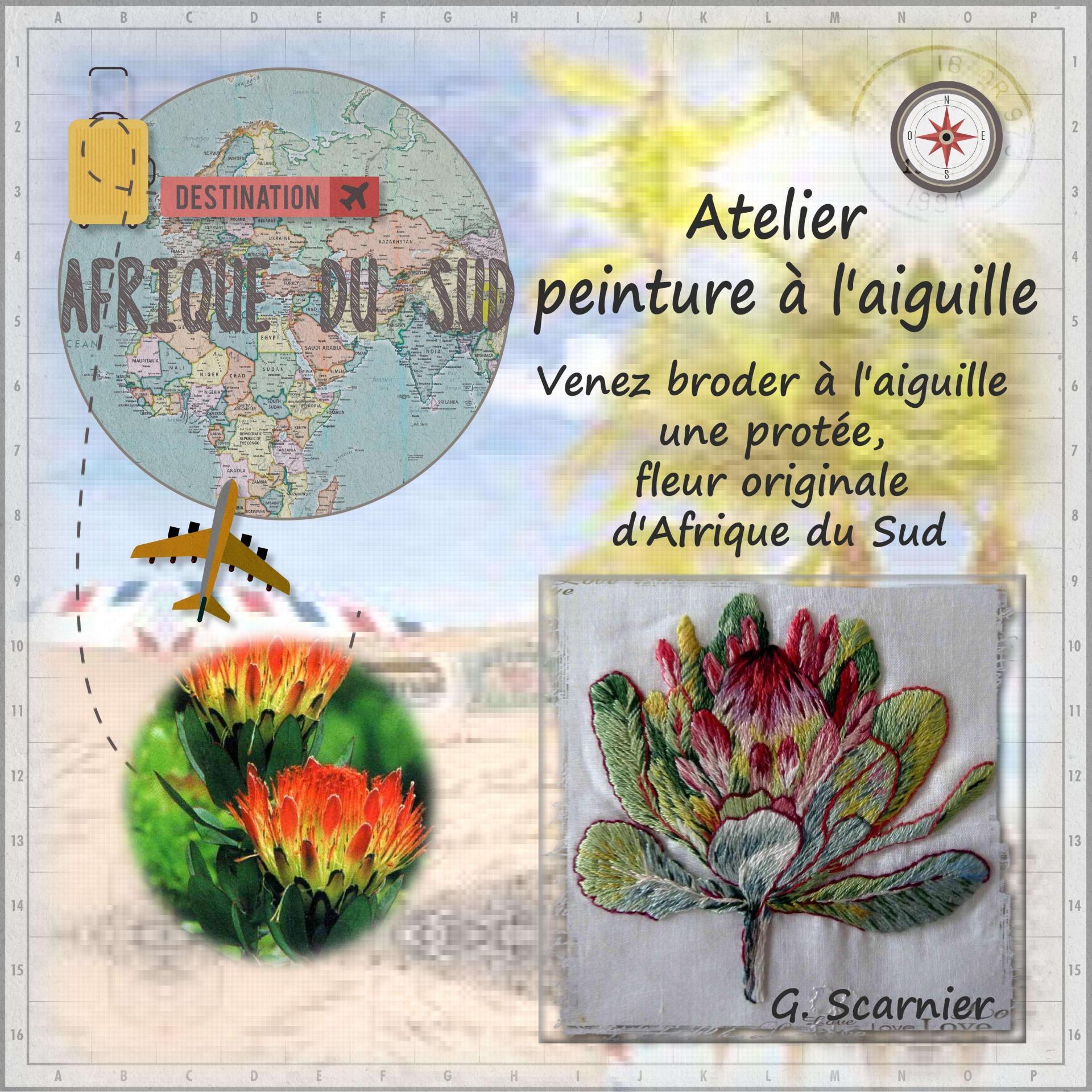 09 scarnier afrique sud